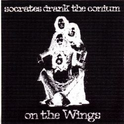 on_the_wings